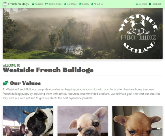 Westside French Bulldogs